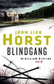Blindgang av Jørn Lie Holst - Gyldendal forlag.